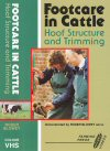 Footcare in Cattle: Hoof Structure and Trimming